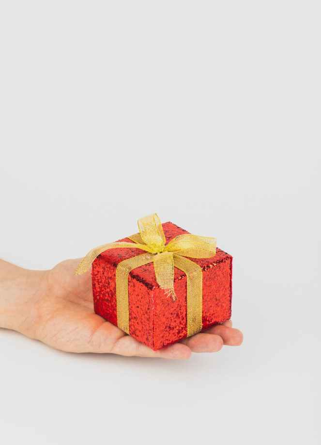 person holding red gift box